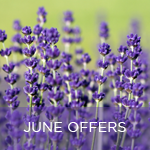 Neal's Yard June offers